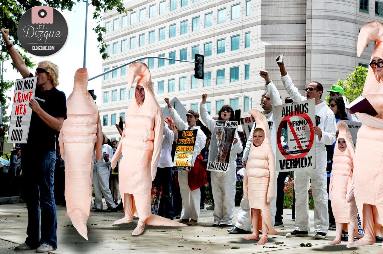Defensores de los derechos de los animales piden prohibicion de desparasitantes — El Partido Verde los respalda 3