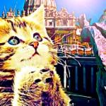 Tras el descubrimiento de un evangelio perdido, el Vaticano declara sagrados a los gatos 5