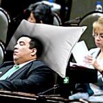 Por medidas de austeridad, los diputados no recibirán almohada en esta legislatura 6