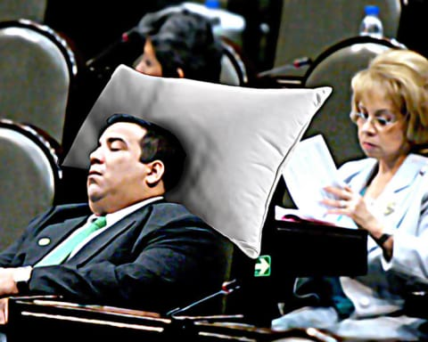 Por medidas de austeridad, los diputados no recibirán almohada en esta legislatura 2