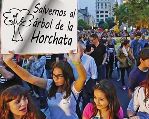 Grupos de jóvenes se manifiestan para salvar al agua de horchata 2