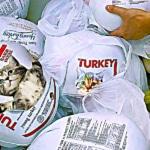 Los pavos congelados que venden en México son en realidad gatos: Profeco 2