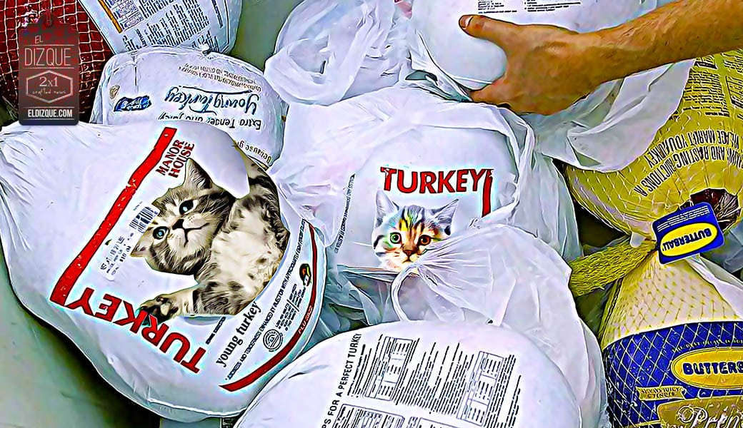Los pavos congelados que venden en México son en realidad gatos: Profeco 1