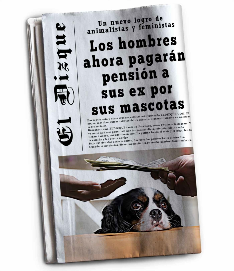 Pensión por mascotas